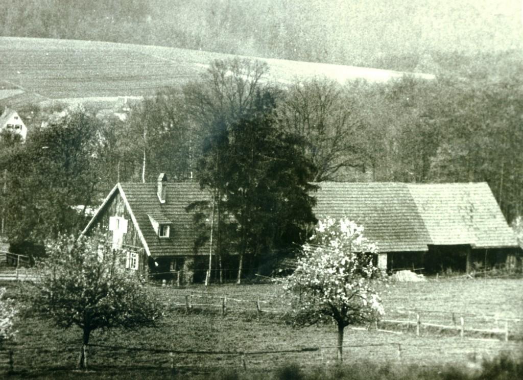 ca.1940. Wirtschaftsgebäude Jungviehweide. v.l. Wohnung, Stallungen, Scheune