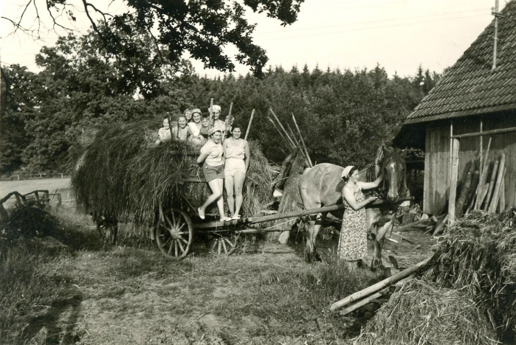 1955. Trotz der Schufterei beim Heumachen war die Familie zusammen glücklich.